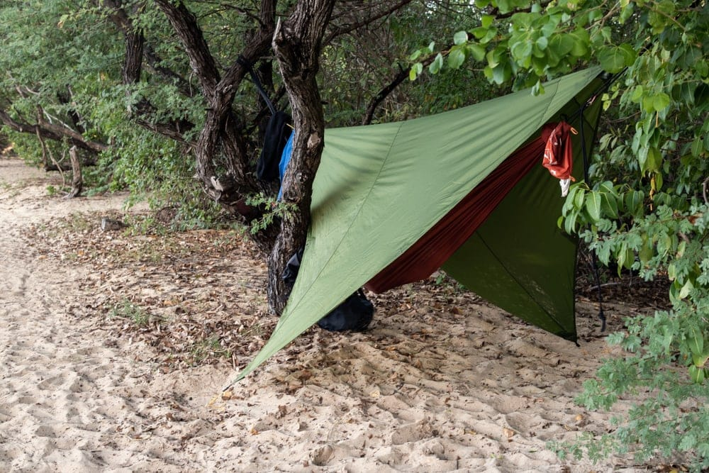 Green hammock tarp hanged tightly between tree trunks