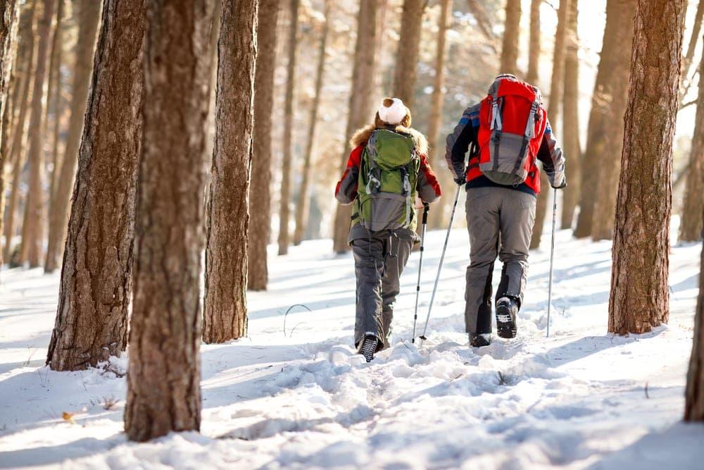Couple walking through winter woods