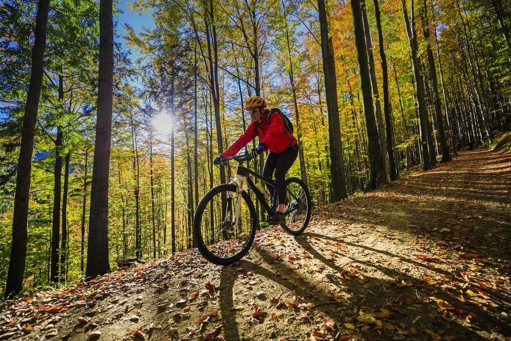 Man biking thru the woods