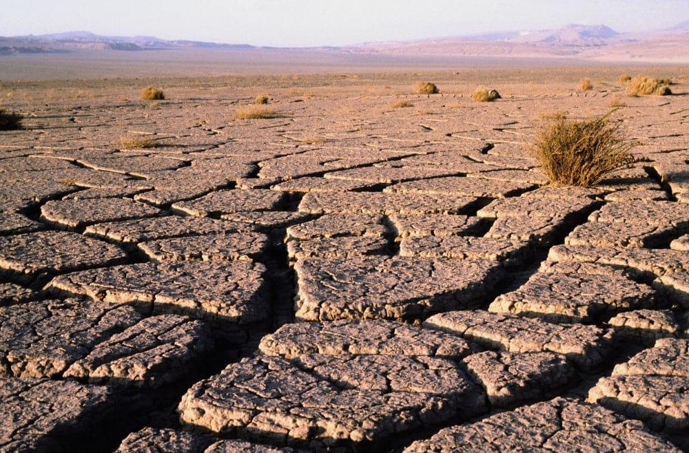 Dry cracked desert in Atacama Desert