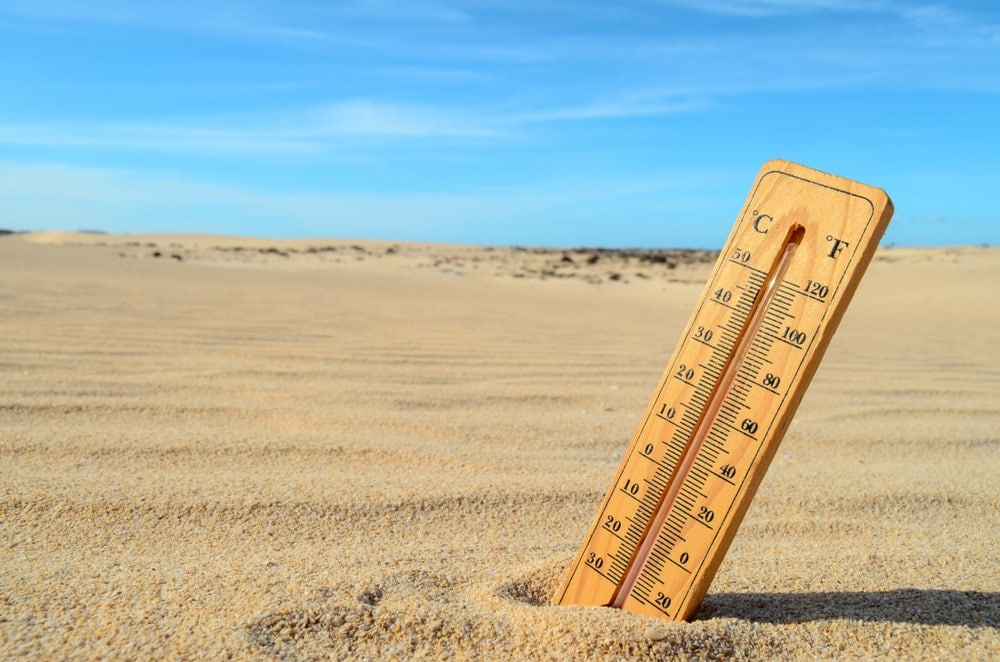 Standing thermometer in the desert