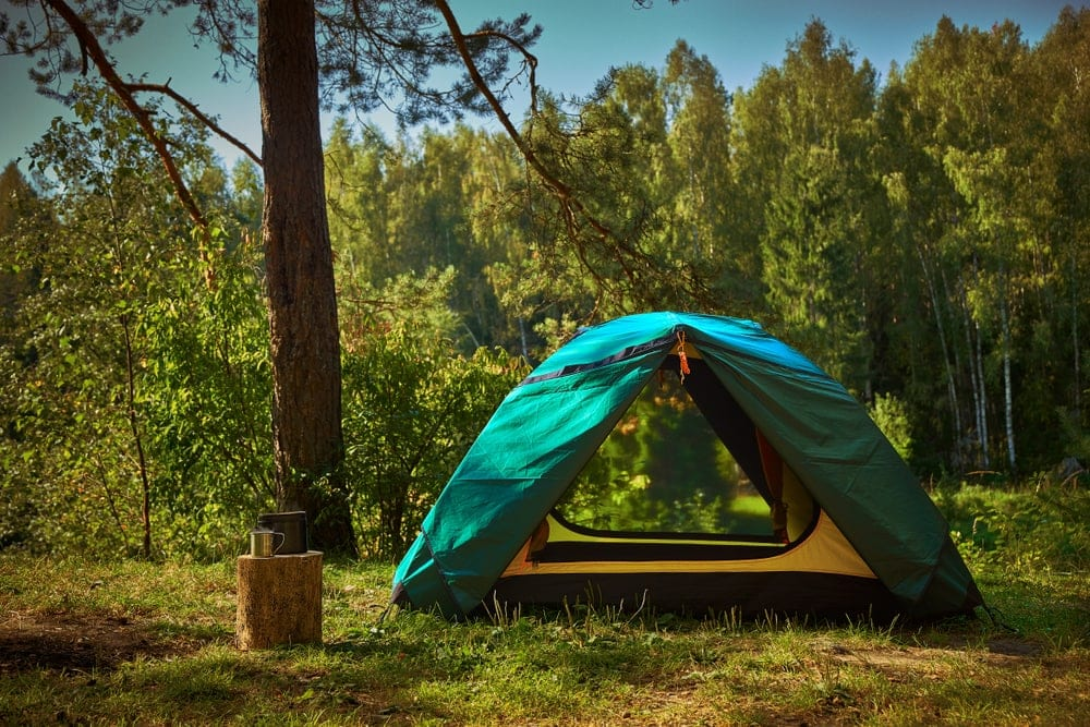 Summer instant tent in the forest