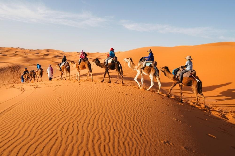 Men riding camels in Sahara desert