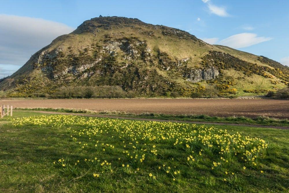 Closeup Picture of Berwick Law volcano in Scotland