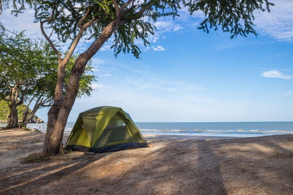 Beach camping tent under a tree