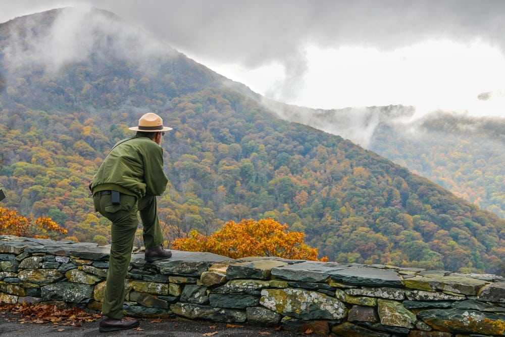 A park ranger looking at the mountains