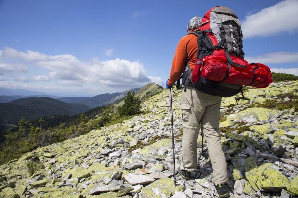 Hiker with trekking pole