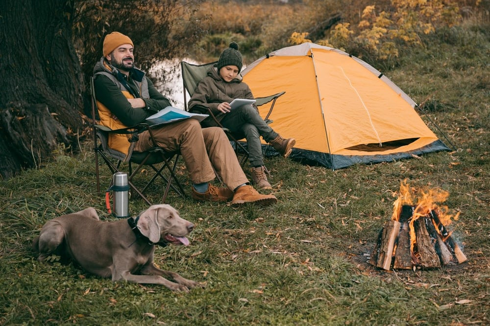 Dog with his owner relaxing while camping