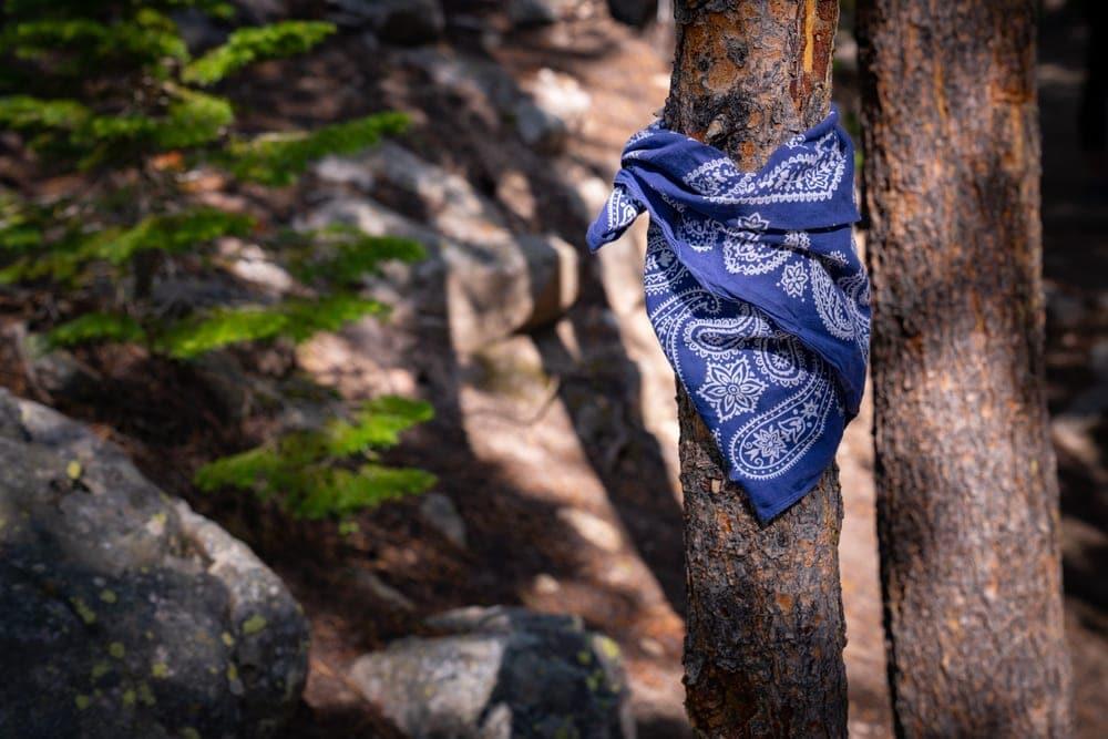 A hiking bandana tied in a tree