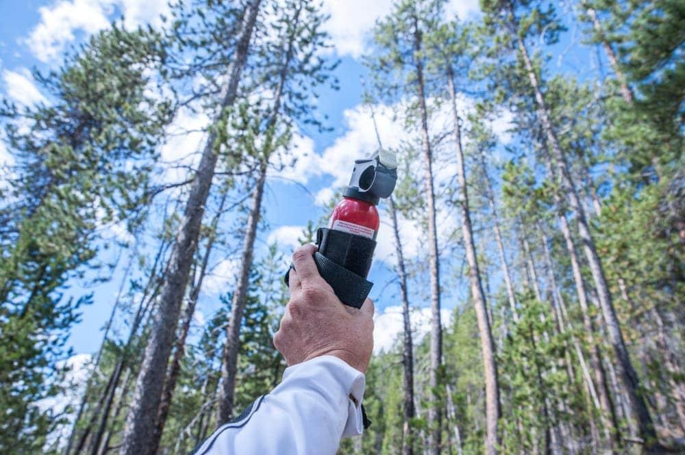Man holding a bear spray