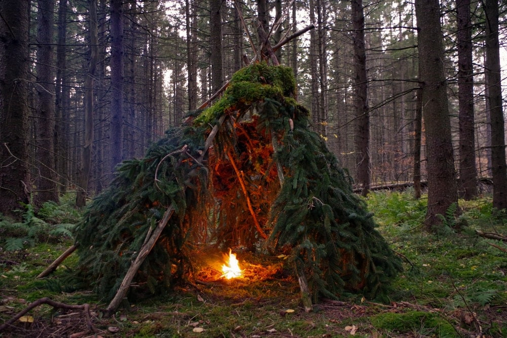 Bushcraft shelter in the forest