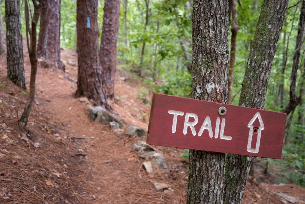 Trail sign along a trail through the forest for backcountry hiking