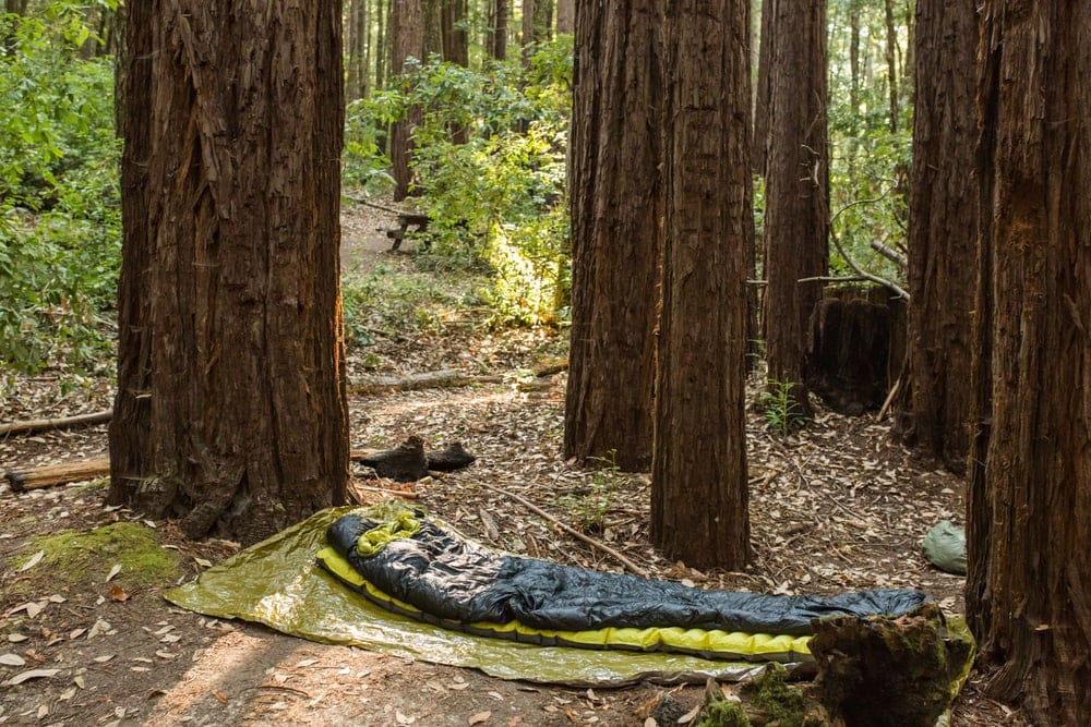 Cowboy camping with only tarp, sleeping bag, and sleeping pad under tall trees