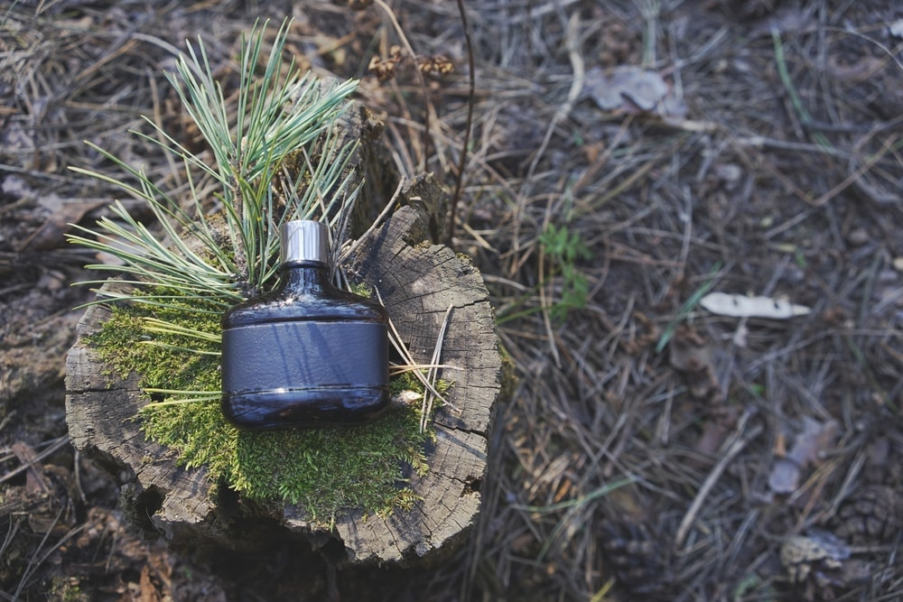 Bear-repellant spray on a tree trunk to use for camping in the bear country