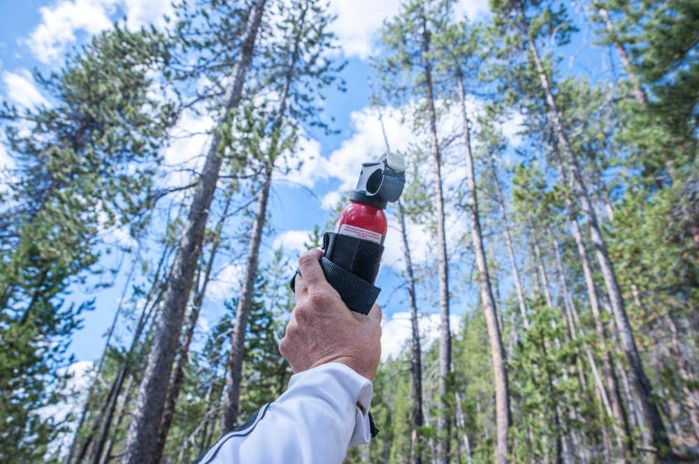 Bear spray for camping in a bear country with trees in the background