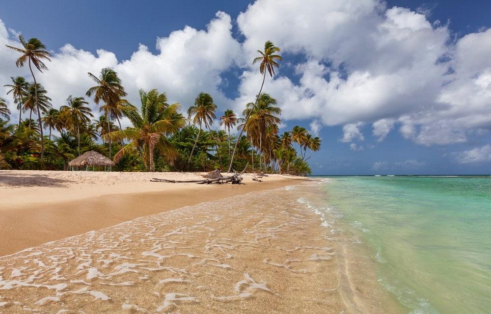 Beach coastal landform in Pigeon Point Trinidad