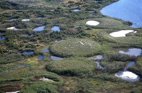 Lithalsa cryogenic landform