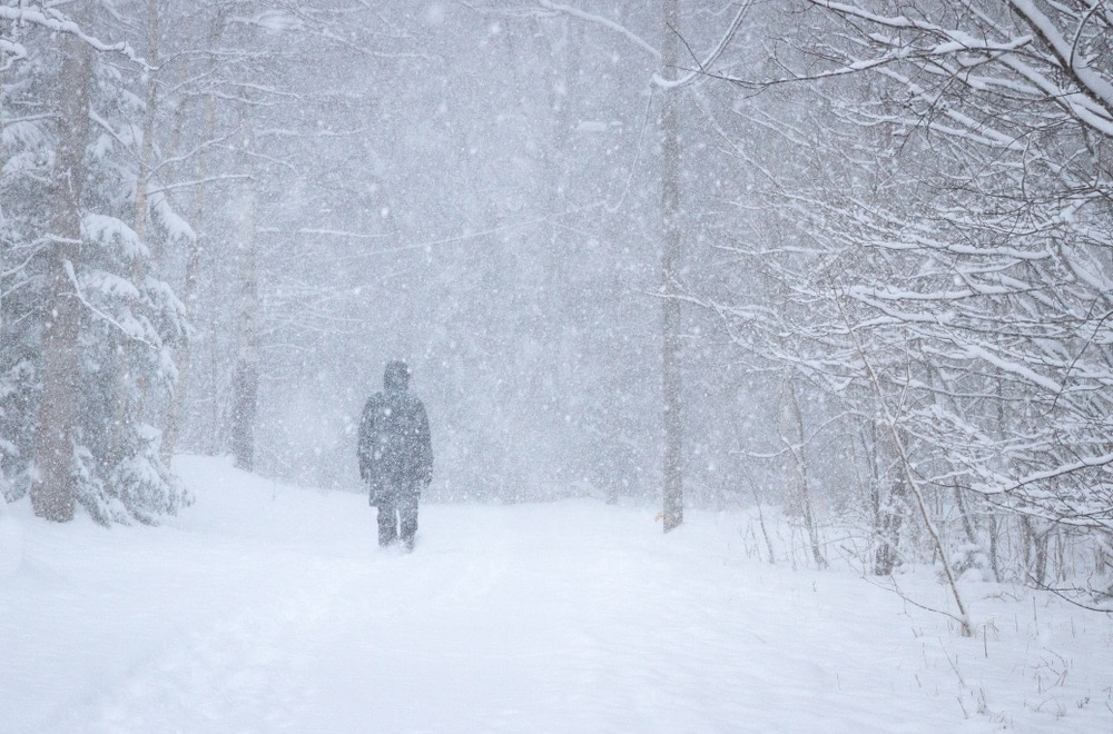 A person walking through trees during a winter blizzard, a type of natural disasters