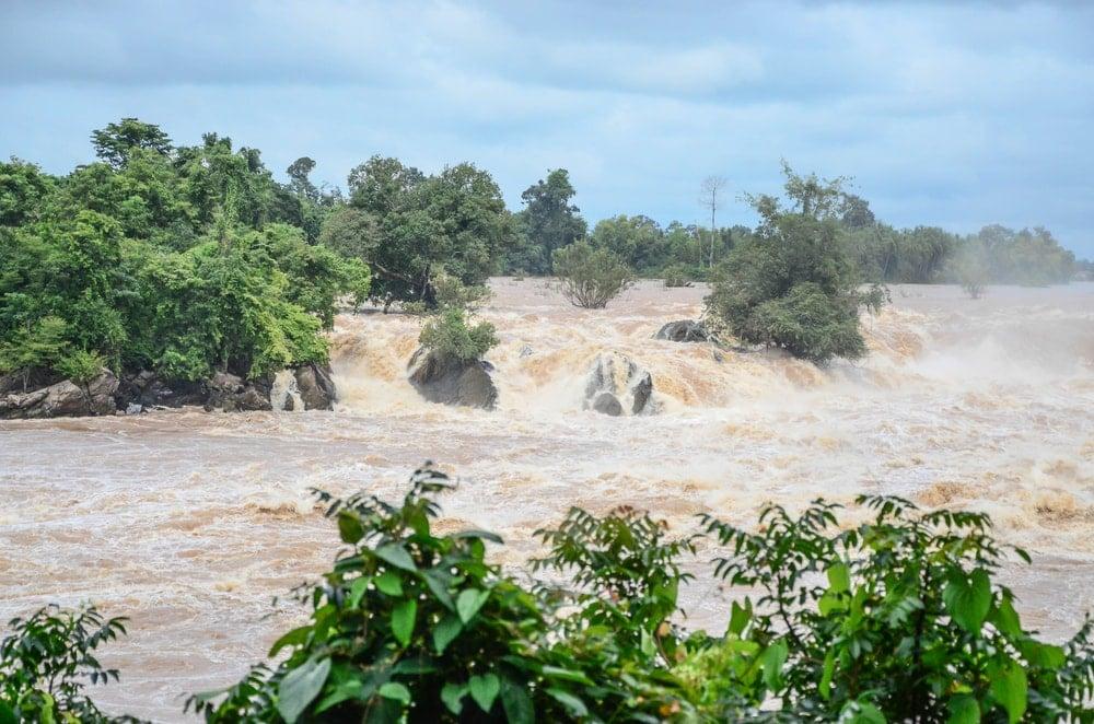 Flash flood flowing through trees