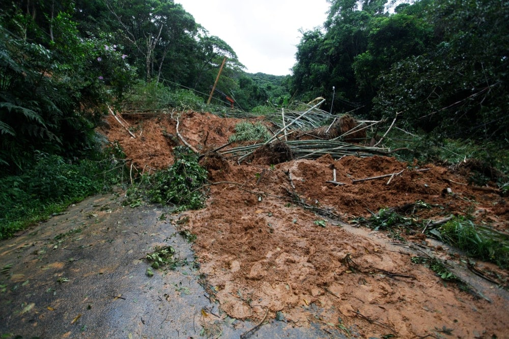 Mudslide and trees blocking a road