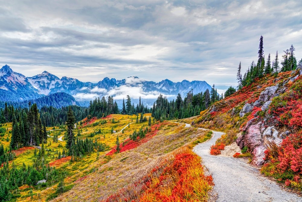 Colorful national park landscape during fall season perfect for camping