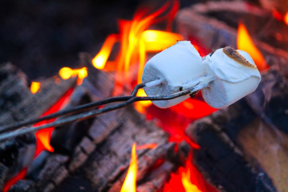 Roasted marshmallows over a campfire