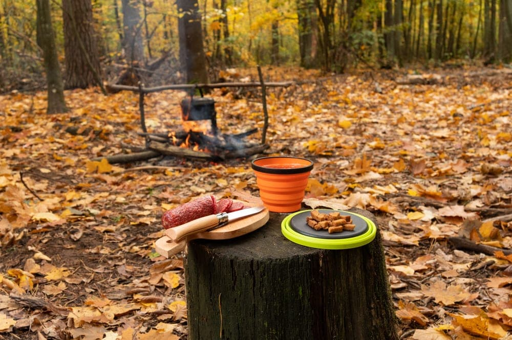 Cooking ingredients and camping equipment on a tree stump near a campfire