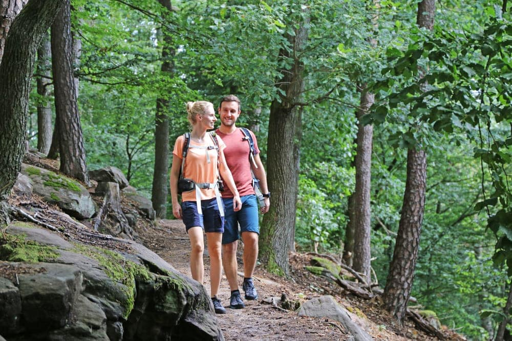 Couple hiking on the forest