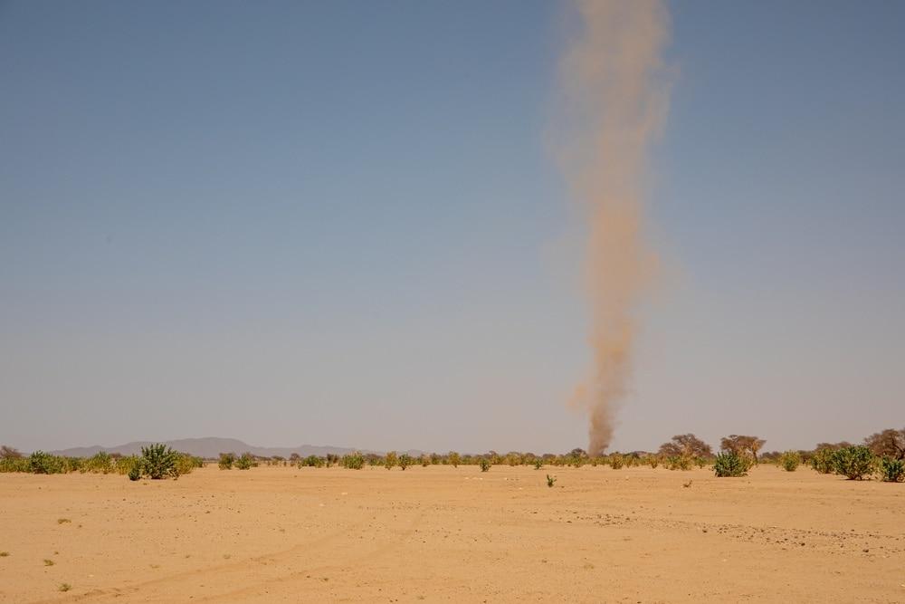 Dust devil in a desert