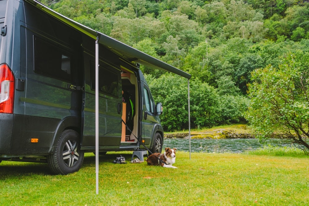 A dog leashed to an RV near a river