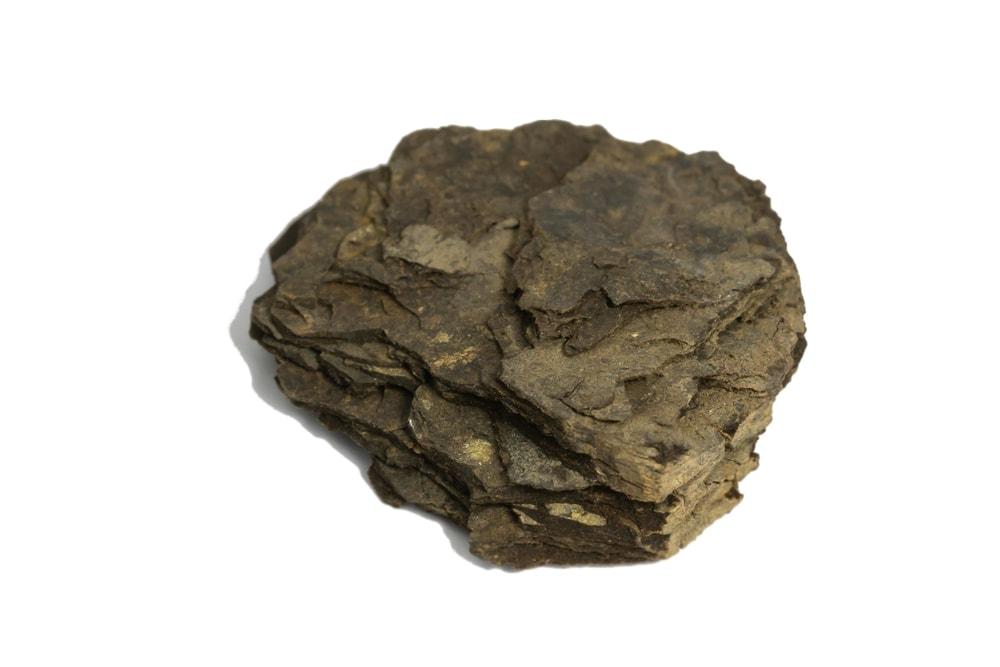 Oil shale rock