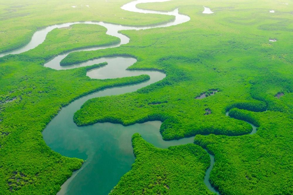 Large River Deltas