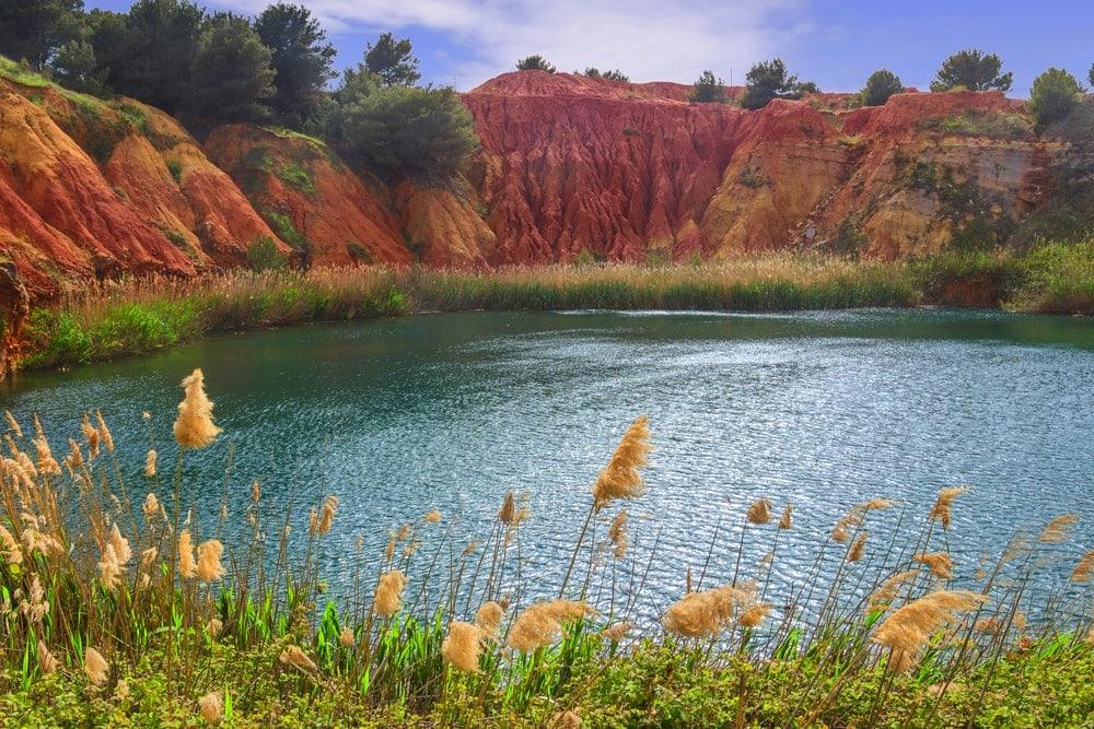 small lake Ecosystem